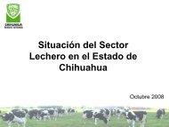 Situación del Sector Lechero en el Estado de Chihuahua