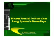 Potential on Biomass Stand-alone energy systems in ... - UPC