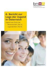 6. Bericht zur Lage der Jugend in Österreich - Ludwig Boltzmann ...