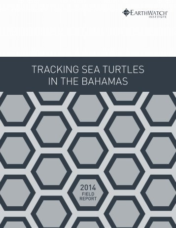 earthwatch-field-report-tracking-sea-turtles-bahamas-2014