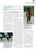 Text 4 - Seite 4