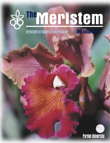 The Meristem-1998 Annual Report - Purdue University Botany and ...
