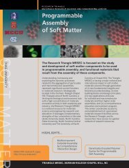 2012 ebrochure TMRSEC 08102012.pdf - Materials Research ...