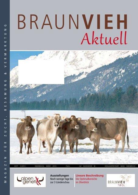 Braunvieh Tirol