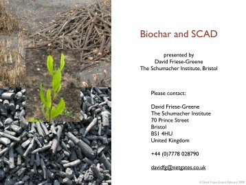 Biochar and SCAD - BioEnergy Discussion Lists