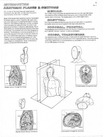 Anatomy Coloring Book P 1 And 2