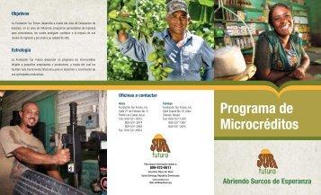 Microcredito - Fundación Sur Futuro