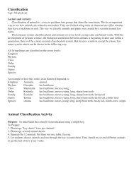 Classification Animal Classification Activity