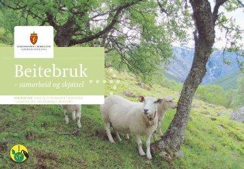 Beitebruk - Norsk Landbruksrådgiving Hordaland