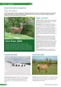 Deer Industry News - Deer Industry New Zealand - Page 3