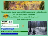 Snow Pack Accumulations and Water Dynamics in Conifer Forests
