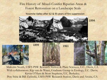 Forest Restoration on a Landscape Scale, and Fire ... - Lassen County