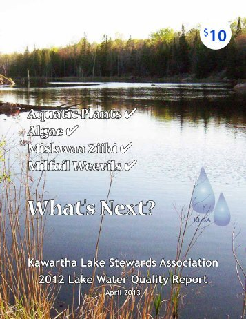 What's Next? - Lakefield Herald