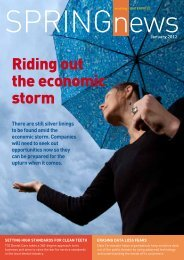 Riding out the economic storm - Association of Consulting ...