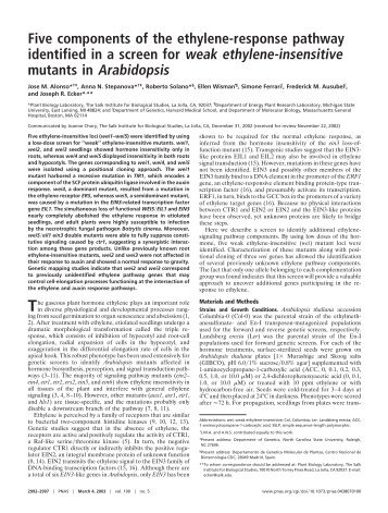 Five components of the ethylene-response pathway identified in a ...
