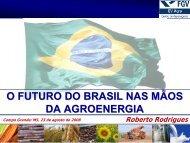 O FUTURO DO BRASIL NAS MÃOS DA AGROENERGIA - OPEC