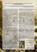 CRISTALES DE NIEVE EN LOS CRISTALES - Page 4