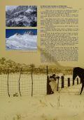 CRISTALES DE NIEVE EN LOS CRISTALES - Page 6