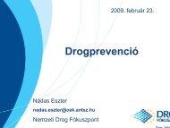 Drogprevenció - Nemzeti Drog Fókuszpont