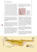 Entstehung der niederrheinischen Braunkohle - IGBCE-Bedburg - Seite 4