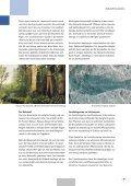 Entstehung der niederrheinischen Braunkohle - IGBCE-Bedburg - Seite 5
