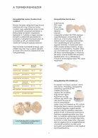 HASZNÁLATI ÚTMUTATÓ - Page 6