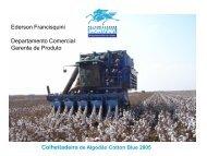 Sistema Montana - Colheitadeira de algodão Cotton Blue ... - Abrapa
