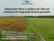 Adequação física e química do solo em sistemas de ... - Abrapa