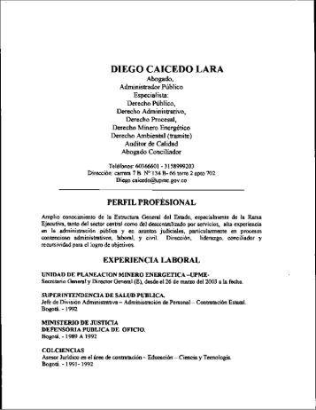 diego caicedo lara - Unidad de Planeación Minero Energética, UPME