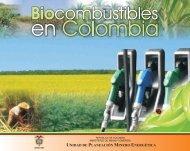 Biocombustibles en Colombia. - Unidad de Planeación Minero ...