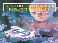 Evolução e desenvolvimento da transgenia no Brasil - Abrapa