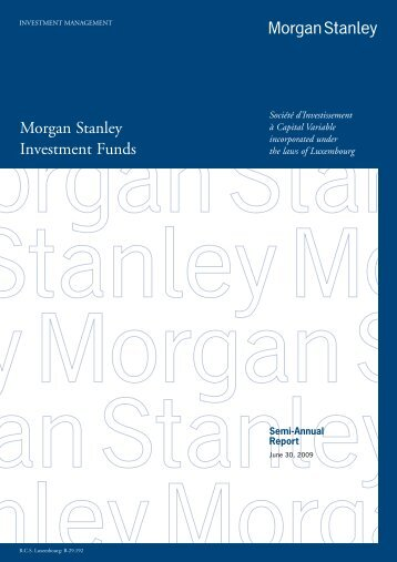 Morgan Stanley Investment Funds - stockselection