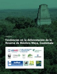 MBR-Deforestation_150213-ES-2