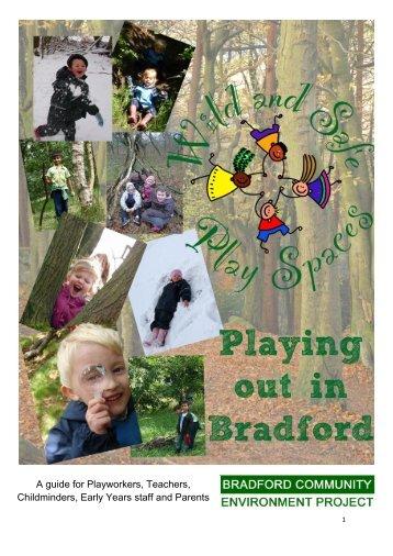 Wasps portfolio - Bradford Forest Schools Network