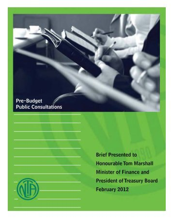 Pre-Budget Public Consultations Submission - Newfoundland and ...