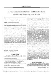 A New Classification Scheme for Open Fractures