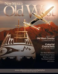 Old West Country - Zia Publishing