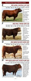red angus - Page 6