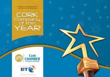 Company of the Year1.pdf - IT@Cork
