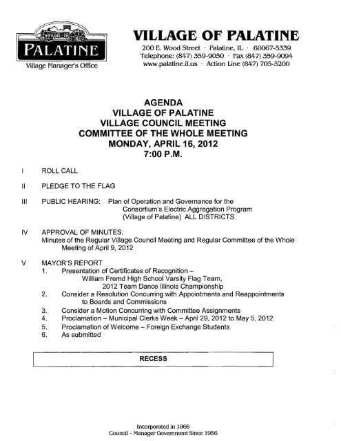 temporary structure permit application Village of Palatine