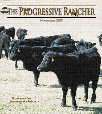 The Progressive Rancher November 2007