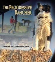 The Progressive Rancher October 2008
