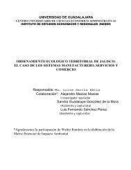 Industria, Comercio y Servicios: diagnóstico - Universidad de ...