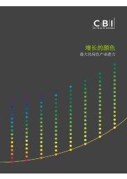 本报告摘要中文版 - CBI