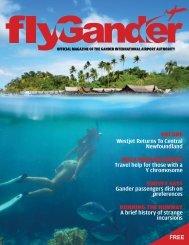 Fly-Gander-Magazine