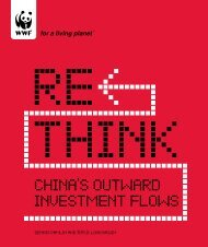 China's Outward investment FlOws - WWF