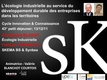 L'écologie industrielle au service du développement ... - Skema
