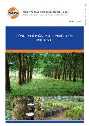 PHR_Báo cáo phân tích đầy đủ - Vinacorp
