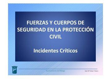 Los Cuerpos y Fuerzas de Seguridad en la Protección Civil Juan ...