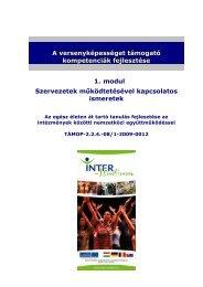 Szervezetek működtetésével kapcsolatos ... - inter-studium.hu